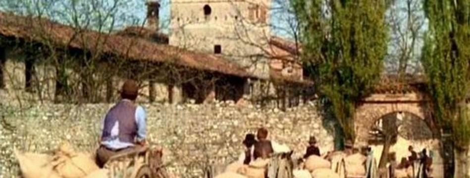I luoghi dell'Albero degli Zoccoli