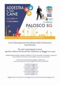Palosco, Addestra il tuo cane @ piazza Manzoni  | Palosco | Lombardia | Italia