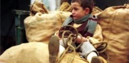 Il 40° de l'Albero degli zoccoli: tra passato, presente e futuro