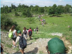Romano di Lombardia, Campi Natura 2018 @ Orto Botanico, Romano di Lombardia | Pascolo | Lombardia | Italia