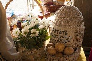 Martinengo, Festa della Patata @ Martinengo