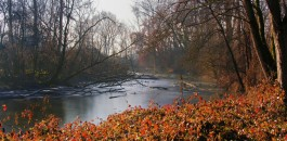 Natura e Parchi