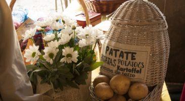 Festa della Patata di Martinengo